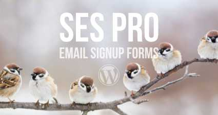 [ SES Pro WordPress Plugin ]